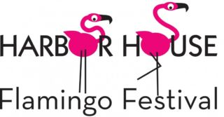 Southwest Harbor Flamingo Festival