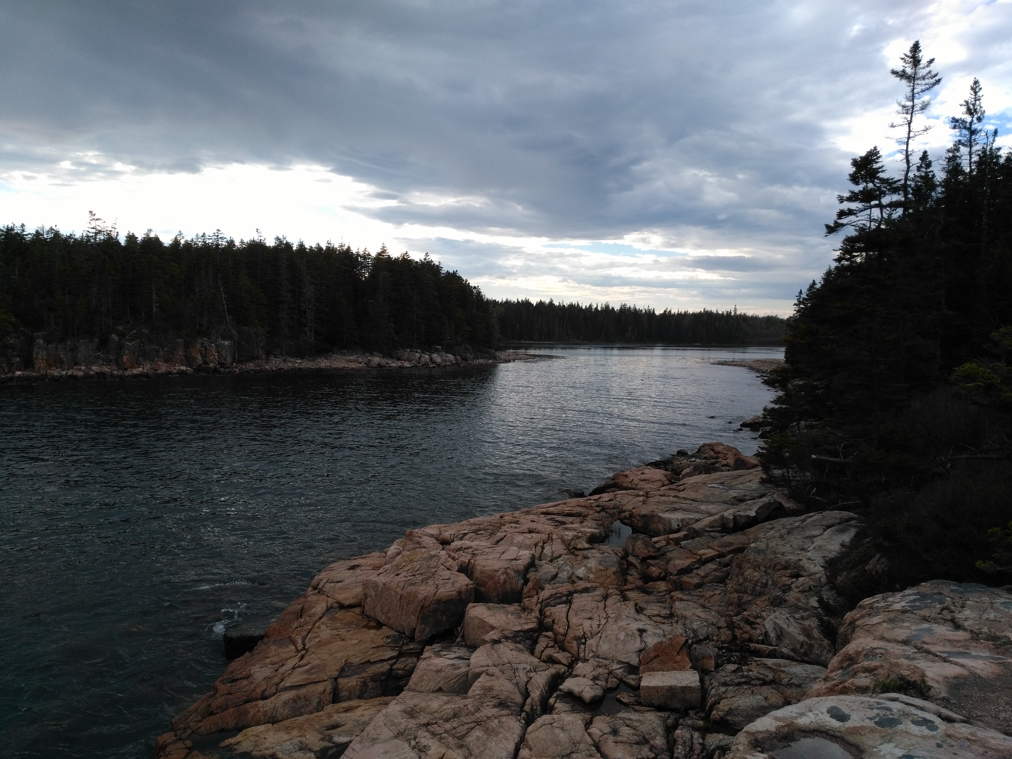 Acadia Hiking Guide: Ship Harbor, Wonderland, Seawall, and Bass Harbor